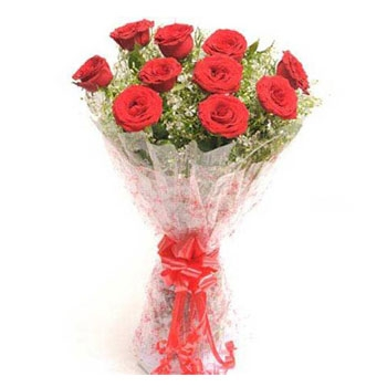 12-imported-red-roses