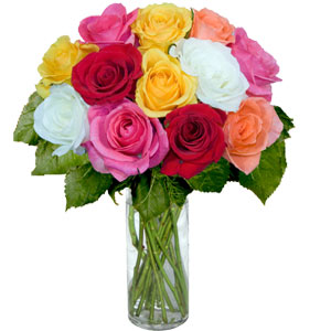 2 Dozen Mixed Roses