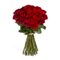 36 Red Roses