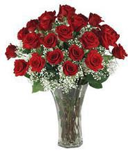 3 Dozen Roses in Vase