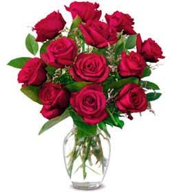 red-roses-in-vase-