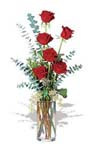 6-red-roses-imported