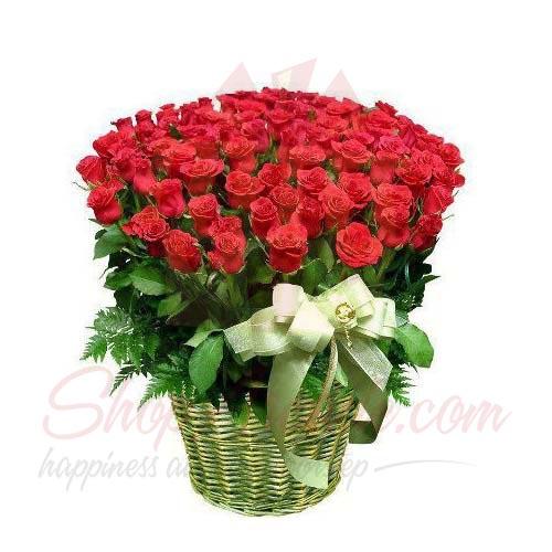 500 Rose Basket
