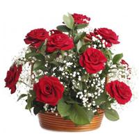 flower-baskets
