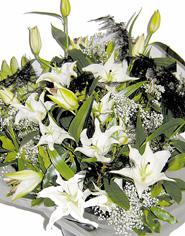 lilies-bunch