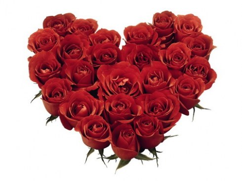 red-roses-heart