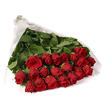 Imported Red Roses