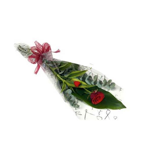 Single Stem Imported Rose