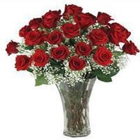 3-dozen-roses-in-vase