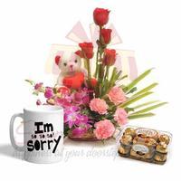 sincere-apologies