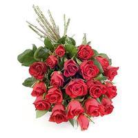 2-dozen-roses