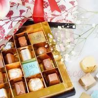 red-iznik-box-(16-pcs)---lals
