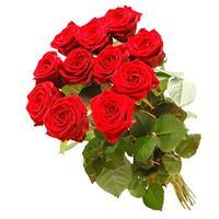 one-dozen-roses