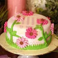 pink-daisies-cake-(4lbs)
